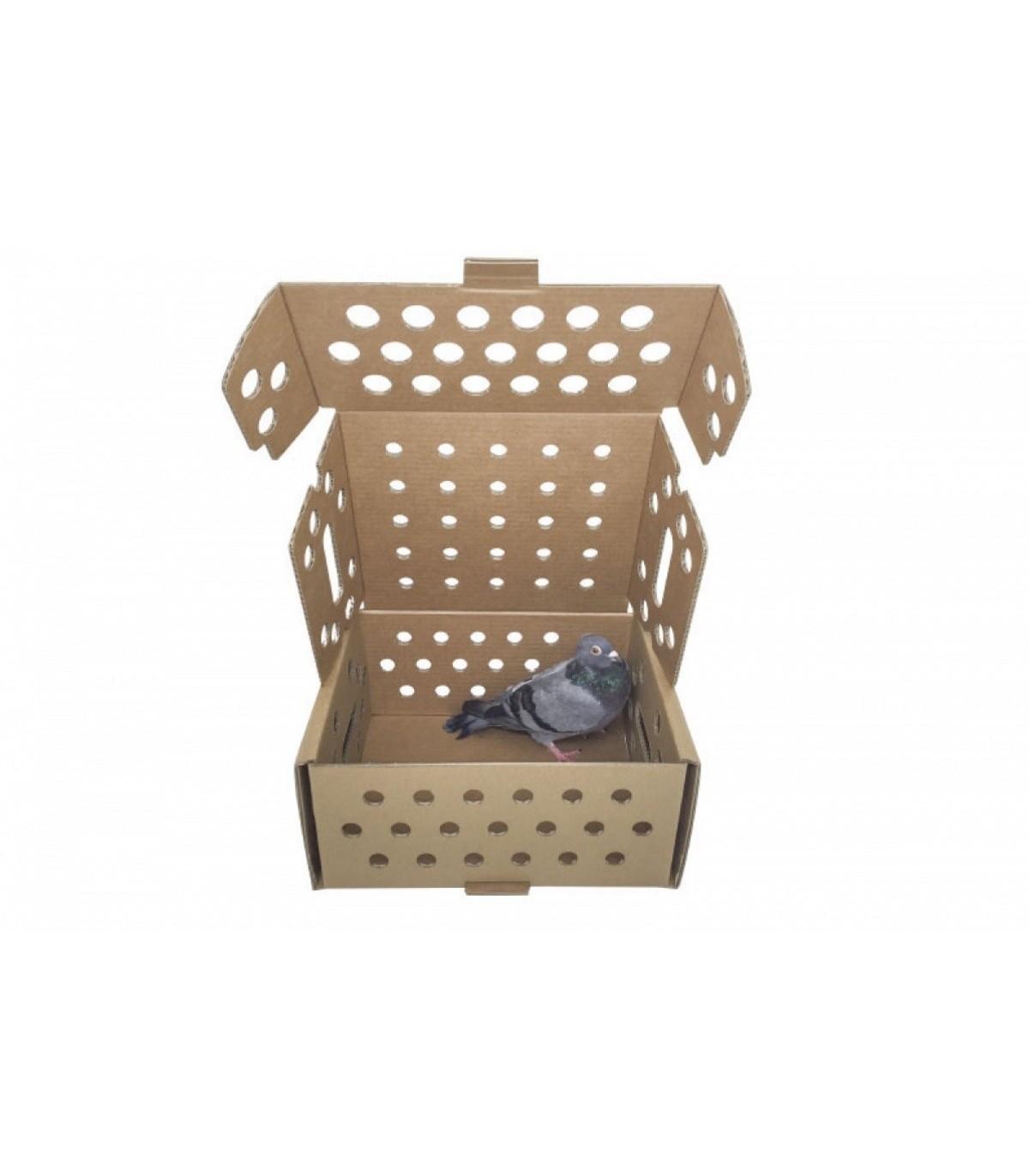 Caja para pequeños animales
