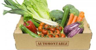 Caja de cartón ara fruta y verdura